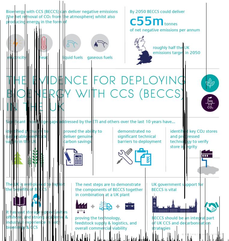 Beccs Infographic Web